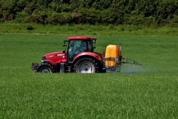 Cómo los subsidios al azúcar de los Estados Unidos traen una marea roja de algas a las costas de Florida