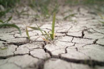Calentamiento global: el plan de la ONU ignora los costos reales de implantación