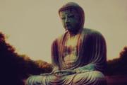 El enfoque pragmático del Buda y el budismo de libre mercado