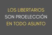 Resolviendo el debate sobre libertarismo y aborto